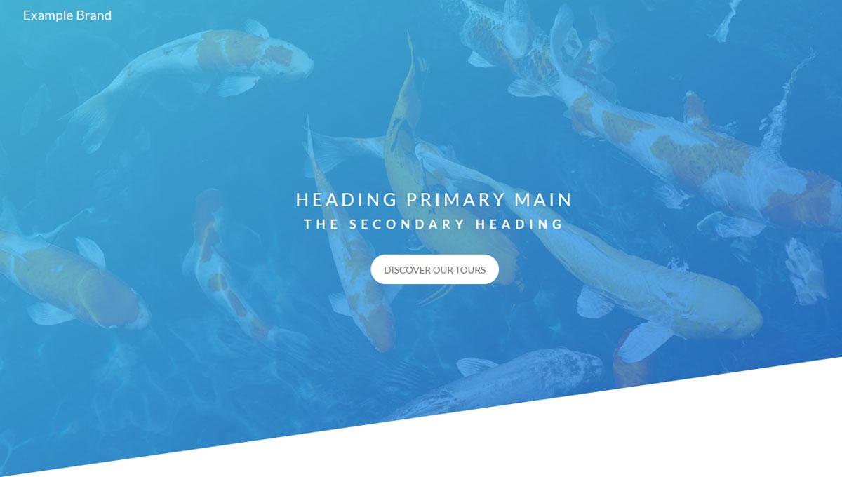 Demo image: Header for Landing Page