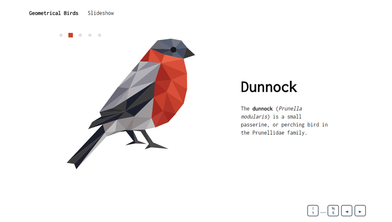 Demo image: Geometrical Birds - Slideshow