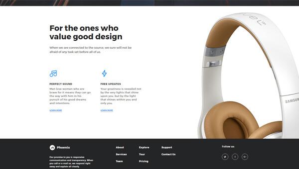 Demo Image: Free Sample – Phoenix Startup UI Kit