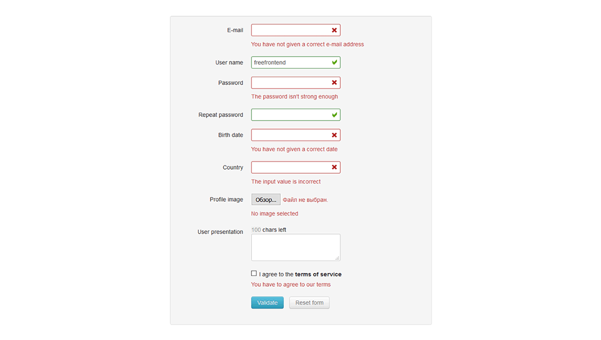 Demo image: jQuery Form Validator