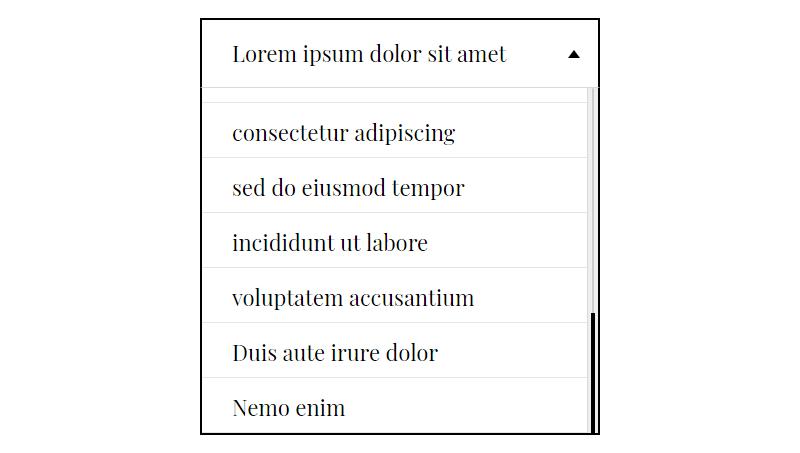 Demo image: Responsive Custom Select Box