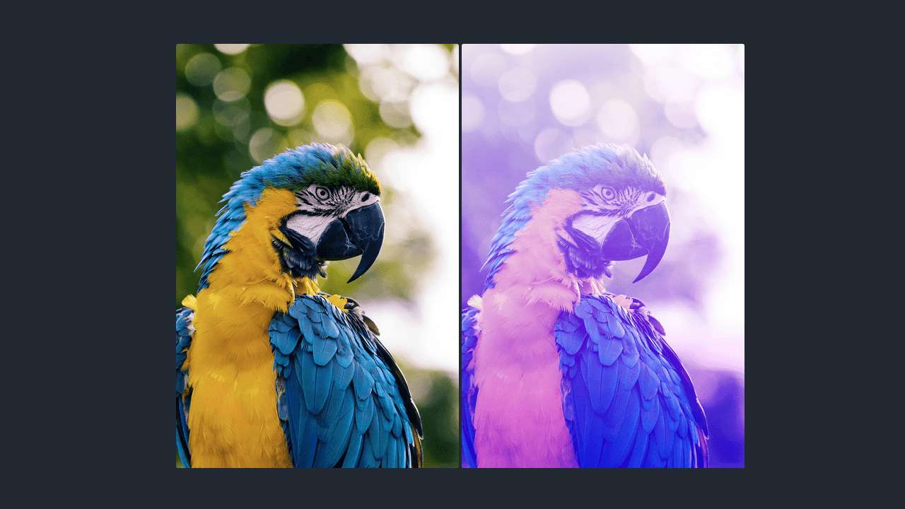 Demo image: Exploring Blend Modes in CSS